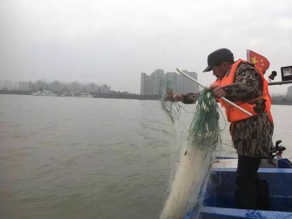 钱塘江首次禁渔怎么回事 钱塘江为何禁渔何时恢复?