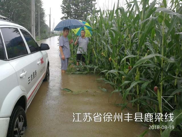 人保财险徐州市分公司全力抗击台风温比亚守