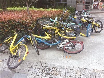 共享单车停放乱象如何解决?可建设单车地下立体车库