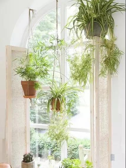 家居装饰不留死角  小窗户也不要忽视