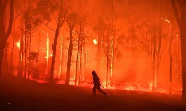 大火烧了四个月,澳大利亚还不醒吗?