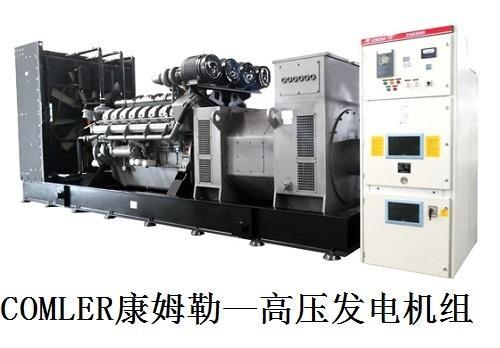 高压发电机组生产厂家:水能替代发电机防冻液吗?