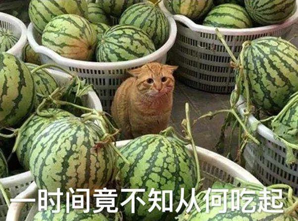 處處瓜田,遍地是瓜,我卻隻想合成大西瓜