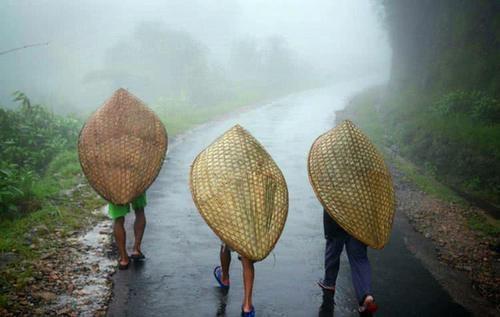 全球最潮湿的地方,一年365天都在下雨,被子上经常会长出蘑菇