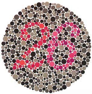学车体检色盲测试图(图2)