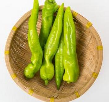 「杮子椒或尖椒」的圖片搜尋結果