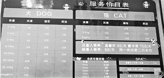 《2018年中国宠物行业白皮书》发布,中国城镇养