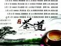 新手学炒股快速入门之张一山股票视频教程_腾讯视频
