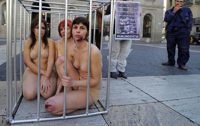 街头惊现半裸美女锁在铁笼里 背后真相让人称赞