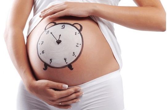 美国第三代试管婴儿移植后的着床情况分析!