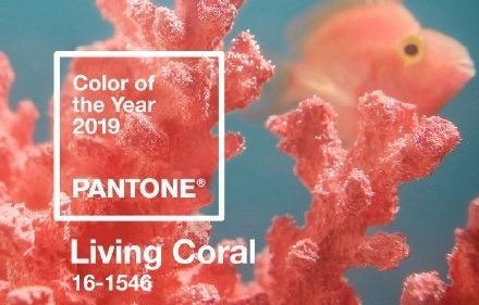 2019年度流行色 Pantone正式宣布为珊瑚红