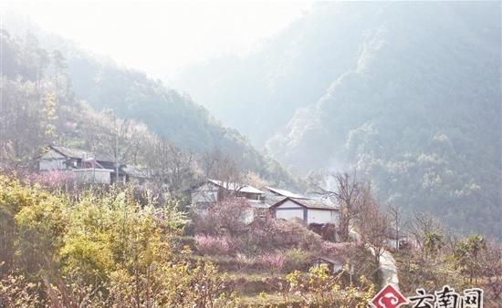 普洱景东县黄草岭:无量山中好风光