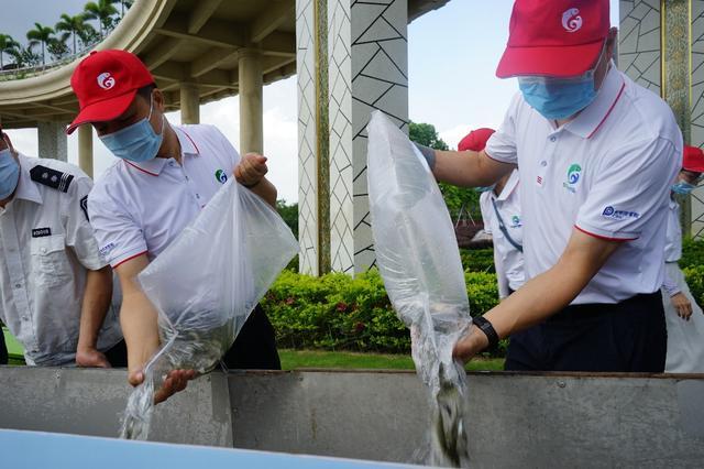 放流魚苗超50萬尾!順德舉行2021魚苗放流活動