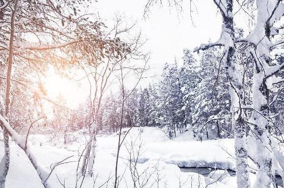 海南21岁女生见下雪异常兴