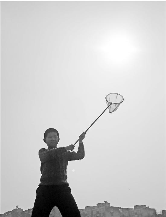 杭州小学晒太阳什么情况?杭州小学周末作业火了竟让学生去晒太阳