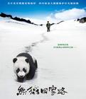 电影《熊猫回家路》讲述了个什么狗万提款流水_狗万怎么玩_狗万投注
