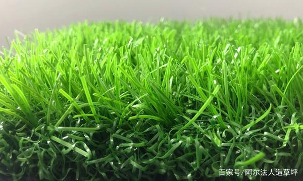 PE和PP作原材料的人造草坪