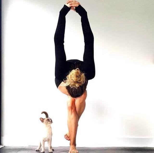 初学瑜伽常识普及,更专业地了解瑜伽体式-轻博客