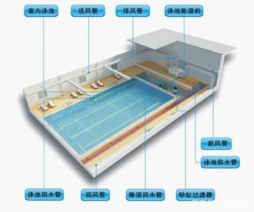 室内游泳馆、儿童游泳池、浴室桑拿房用除湿机