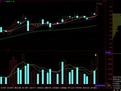 股票入门基础知识视频教程 股票教程入门全套-财经-高清视频-爱...