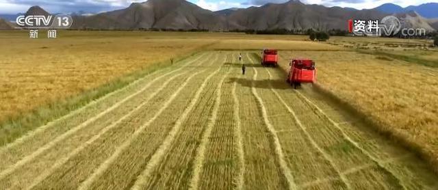 我國儲備糧規模穩定糧食完好倉容超6.5億噸 達到世界較先進水平