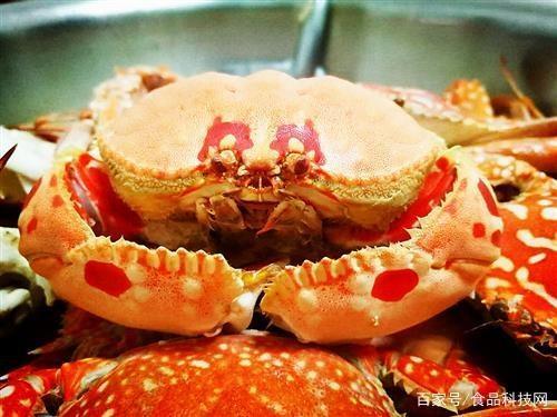清蒸螃蟹 家常清蒸螃蟹的做法