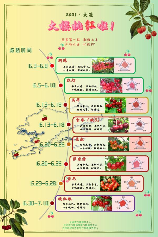 今年,大連櫻桃何時成熟?