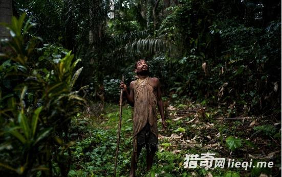 世界最矮人种还惨被食人族惦记