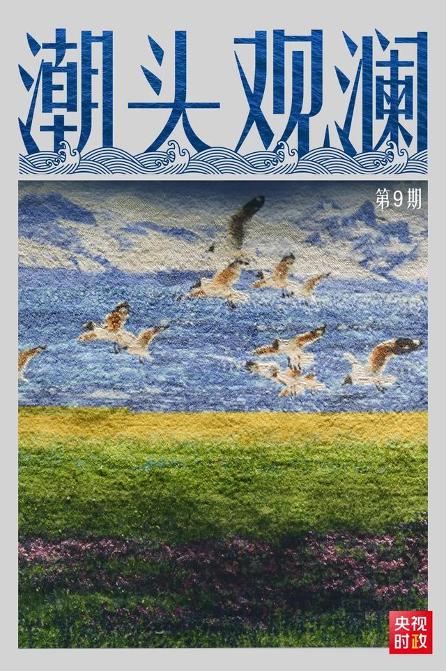 潮頭觀瀾丨藏毯傳奇 民族瑰寶